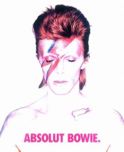 absolut bowie