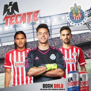 tacate born bold tw 26616