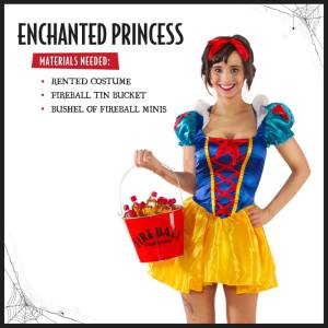 fball-princess-fb-241016